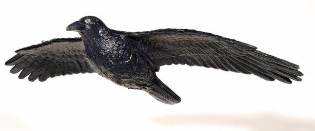 Fliegender Rabe FRANZBOGEN